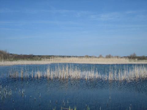 Duinmeer