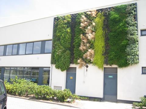 Gevelbeplanting op bedrijfsgebouw
