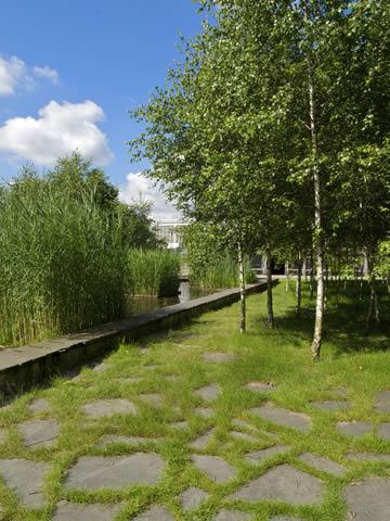 Buitenterrein op de High Tech Campus Eindhoven