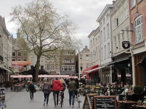 Plataan binnenstad Breda