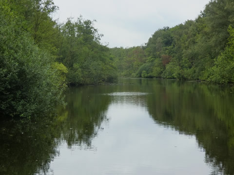 Uitzicht vanaf zitelement in de rivierarm