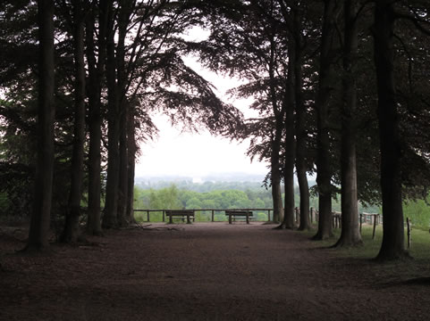 Uitzicht over Gelderse Vallei
