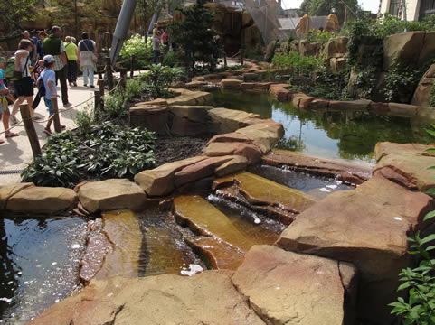 Beekje in Zoo