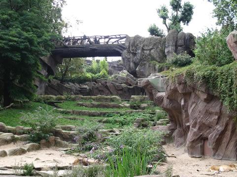 Brug in Zoo