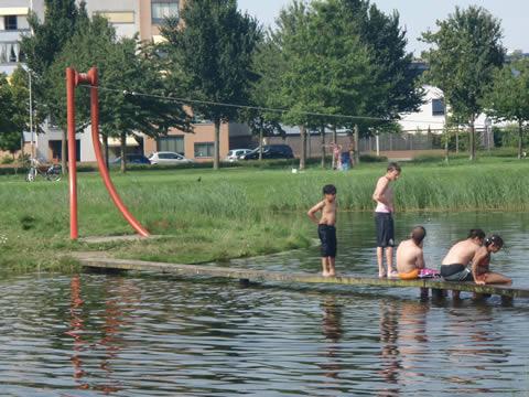 Zwemmen in stadsvijver