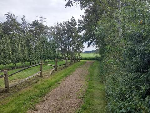 Wandelpad nabij landgoed Hemmen